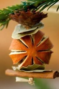 мандарин-корица