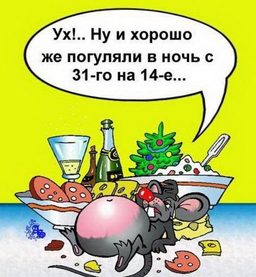 pozdravleniya-so-starym-novym25