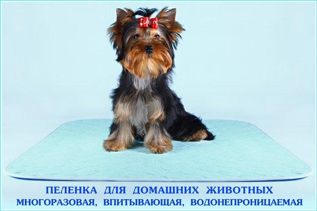 http://mama.tomsk.ru/foto/albums/userpics/50572/71e263f0c153.jpg