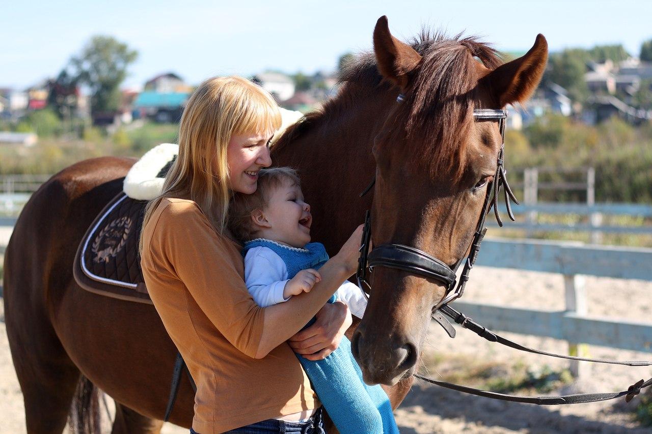 Лошади мамы и дети фото